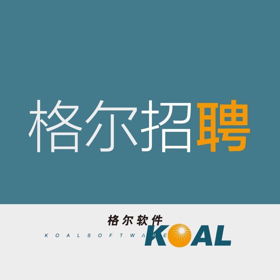 海南招人用什么网站+格尔软件