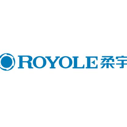 Royole柔宇科技