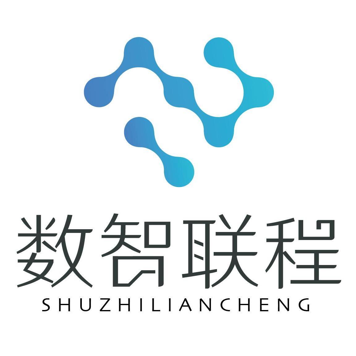 数智联程(重庆)科技有限公司