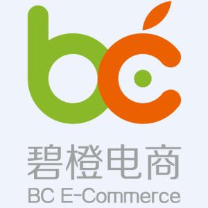 碧橙网络Logo