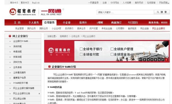 招商 银行 香港 专业 版